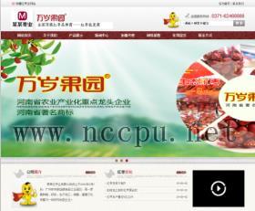 红枣干果等食品类公司企业产品展示网